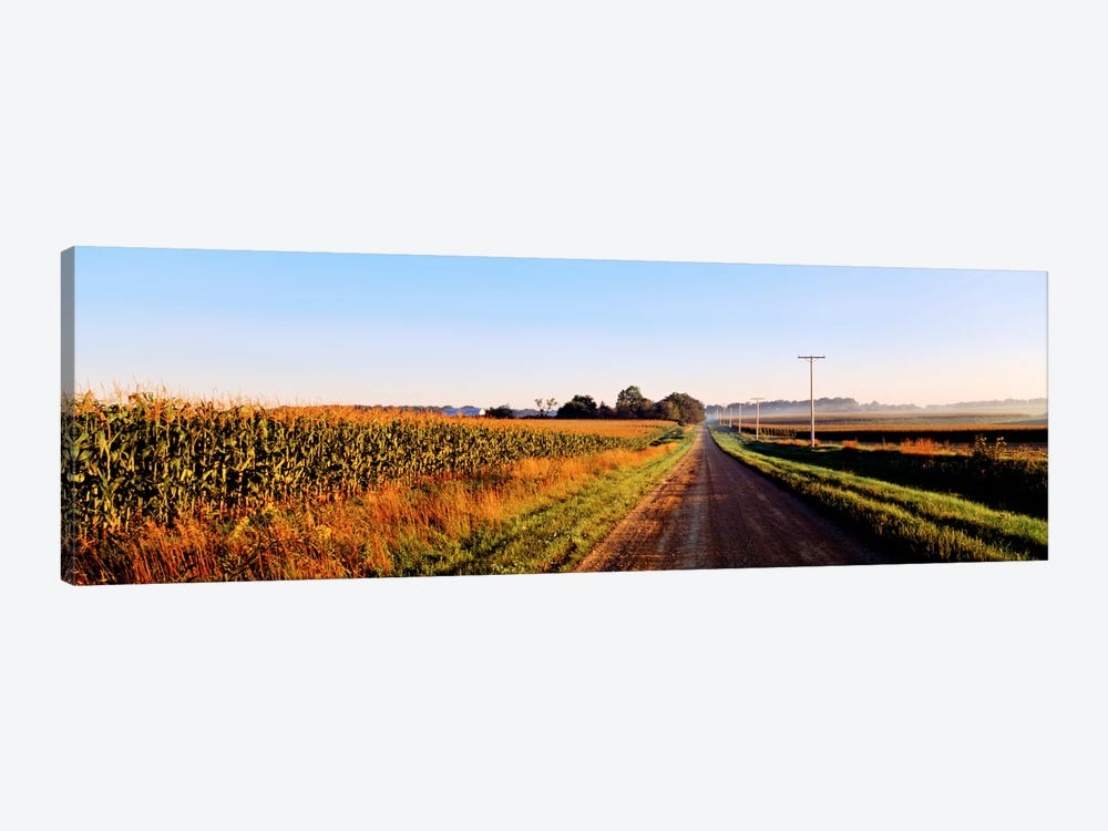 Rural Dirt Road, Illinois, USA by Panoramic Images 1-piece Canvas Art