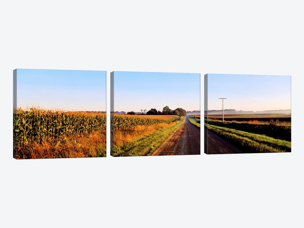 Rural Dirt Road, Illinois, USA by Panoramic Images 3-piece Canvas Wall Art