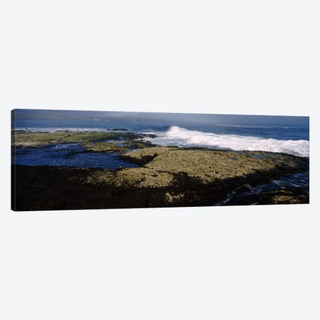Rock formations at the coastFernandina Island, Galapagos Islands, Ecuador Canvas Print #PIM2045} by Panoramic Images Canvas Wall Art