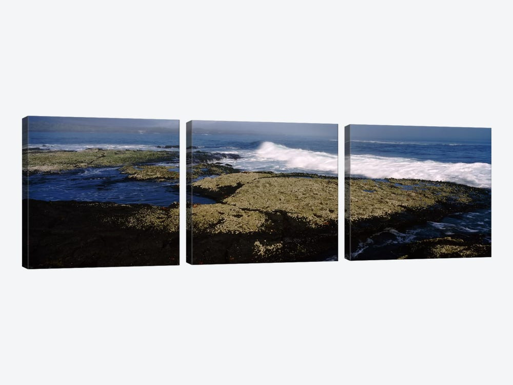 Rock formations at the coastFernandina Island, Galapagos Islands, Ecuador by Panoramic Images 3-piece Canvas Art Print
