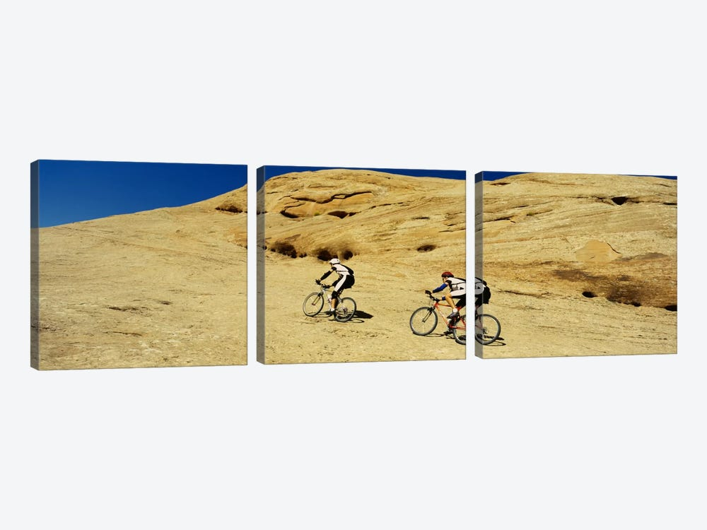 Side profile of two men mountain bilking on rocks, Slickrock Trail, Moab, Utah, USA by Panoramic Images 3-piece Art Print