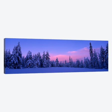 Snowy Winter Landscape, Dalarna, Svealand, Sweden Canvas Print #PIM214} by Panoramic Images Canvas Wall Art