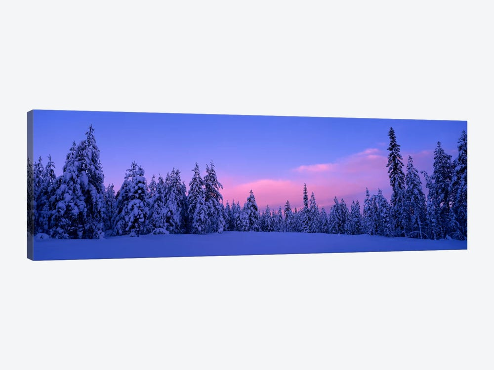 Snowy Winter Landscape, Dalarna, Svealand, Sweden by Panoramic Images 1-piece Canvas Wall Art