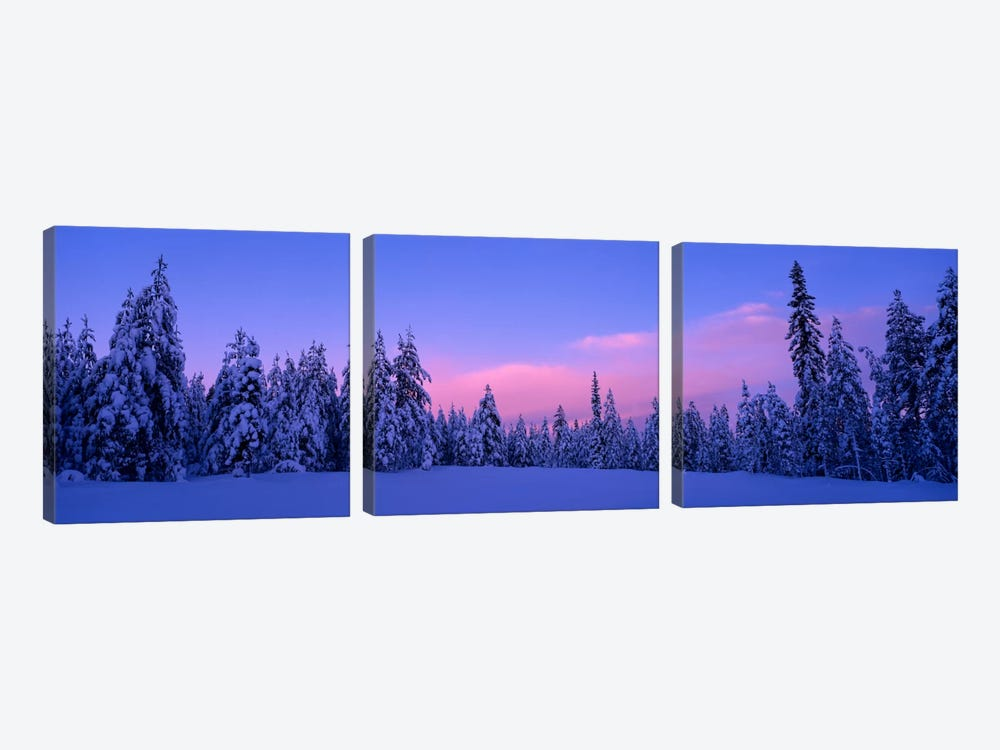 Snowy Winter Landscape, Dalarna, Svealand, Sweden by Panoramic Images 3-piece Canvas Wall Art