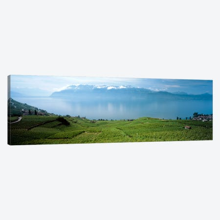 Vineyard Terraces & Lake Geneva, Lavaux, Vaud, Switzerland Canvas Print #PIM2198} by Panoramic Images Canvas Art Print