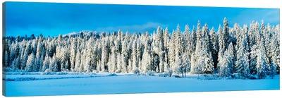 Winter Wawona Meadow Yosemite National Park CA USA Canvas Print #PIM2246