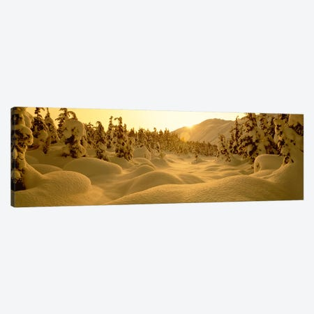 Snowy Winter Landscape At Sunset, Turnagain Pass, Kenai Peninsula Borough, Alaska, USA Canvas Print #PIM2355} by Panoramic Images Canvas Wall Art