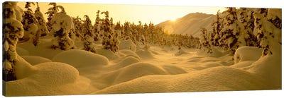 Snowy Winter Landscape At Sunset, Turnagain Pass, Kenai Peninsula Borough, Alaska, USA Canvas Print #PIM2355