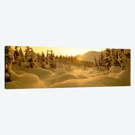Snowy Winter Landscape At Sunset, Turnagain Pass, Kenai Peninsula Borough, Alaska, USA Canvas Print #PIM2355} by Panoramic Images Canvas Wall Art
