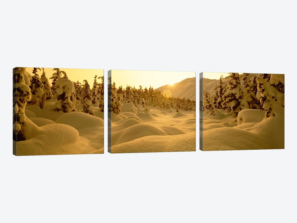 Snowy Winter Landscape At Sunset, Turnagain Pass, Kenai Peninsula Borough, Alaska, USA by Panoramic Images 3-piece Canvas Wall Art