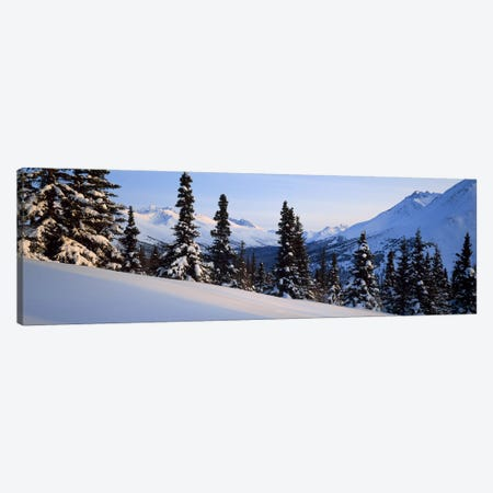Winter Chugach Mountains AK Canvas Print #PIM2356} by Panoramic Images Canvas Wall Art