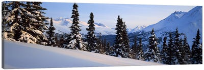 Winter Chugach Mountains AK Canvas Print #PIM2356