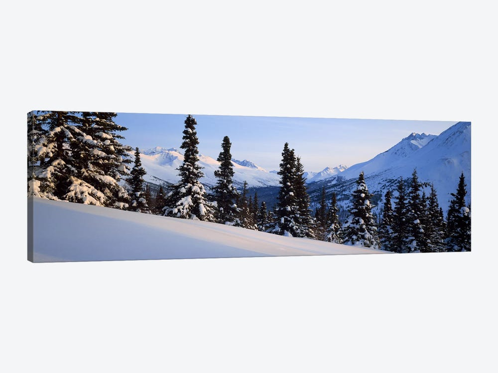 Winter Chugach Mountains AK by Panoramic Images 1-piece Canvas Art Print