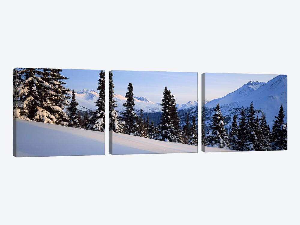 Winter Chugach Mountains AK by Panoramic Images 3-piece Canvas Print