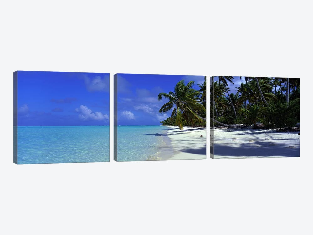 Isolated Beach, Teti'aroa, Windward Islands, Society Islands, French Polynesia by Panoramic Images 3-piece Canvas Print