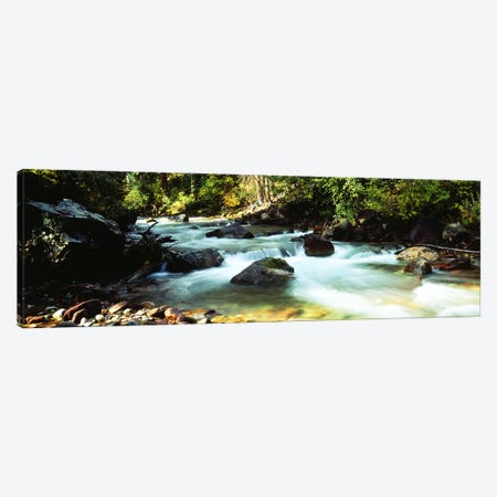 Mountain Stream CO USA Canvas Print #PIM2369} by Panoramic Images Canvas Wall Art