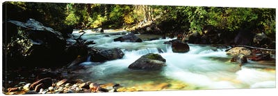 Mountain Stream CO USA Canvas Art Print