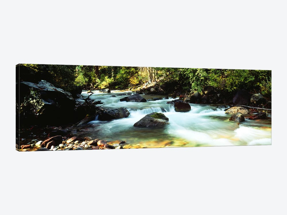 Mountain Stream CO USA by Panoramic Images 1-piece Canvas Art Print