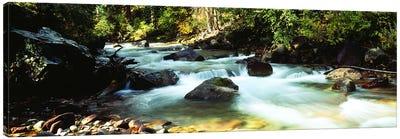 Mountain Stream CO USA Canvas Art Print