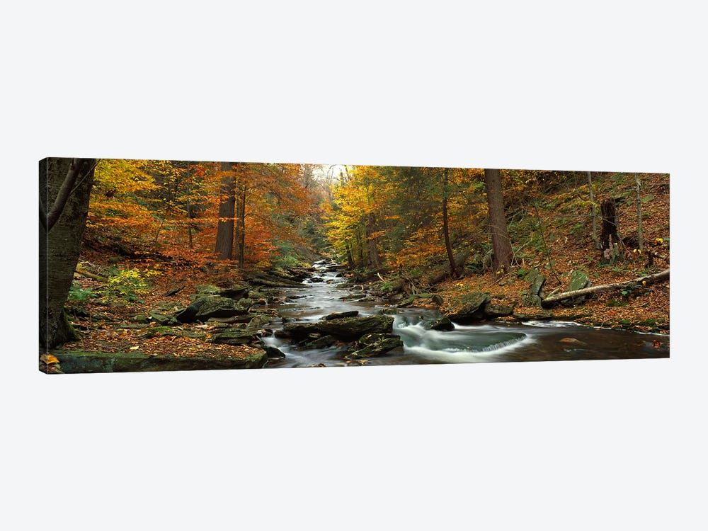 Fall Trees Kitchen Creek PA by Panoramic Images 1-piece Canvas Art