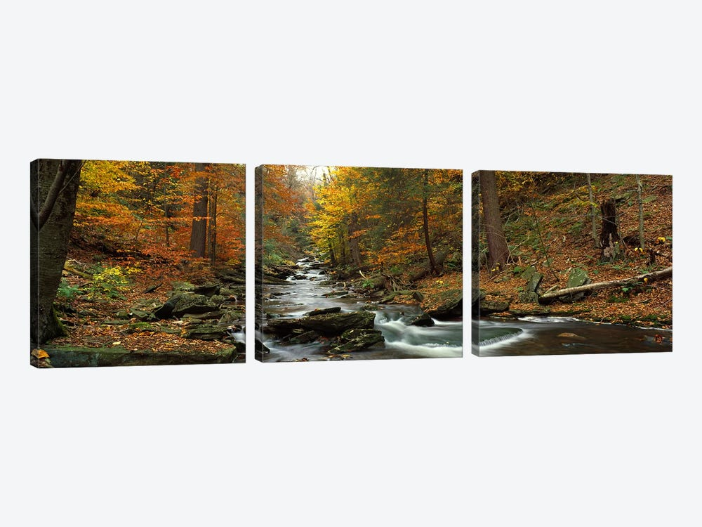 Fall Trees Kitchen Creek PA by Panoramic Images 3-piece Canvas Wall Art