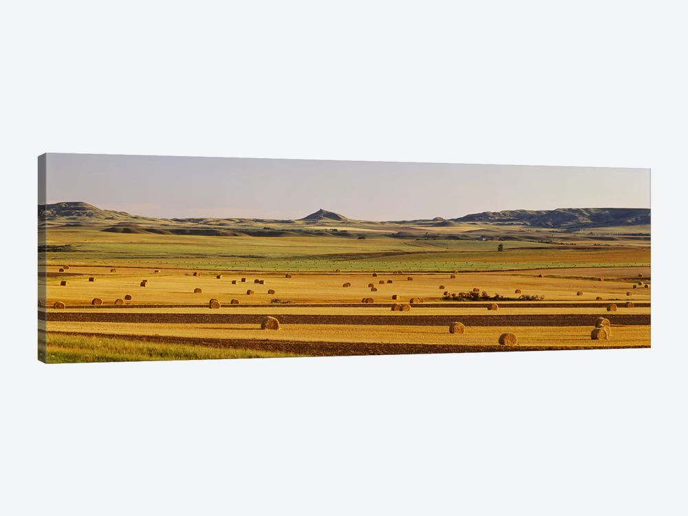 Slope country ND USA by Panoramic Images 1-piece Canvas Print