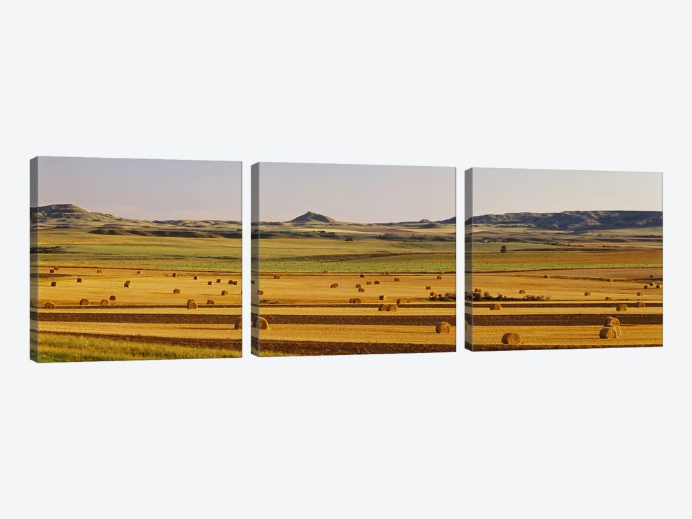 Slope country ND USA by Panoramic Images 3-piece Canvas Print
