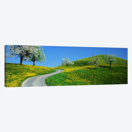 Winding Road Canton Switzerland Canvas Print #PIM2382} by Panoramic Images Canvas Wall Art