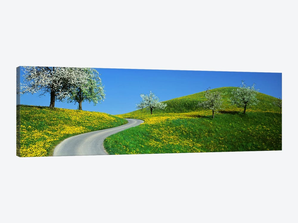 Winding Road Canton Switzerland by Panoramic Images 1-piece Canvas Artwork