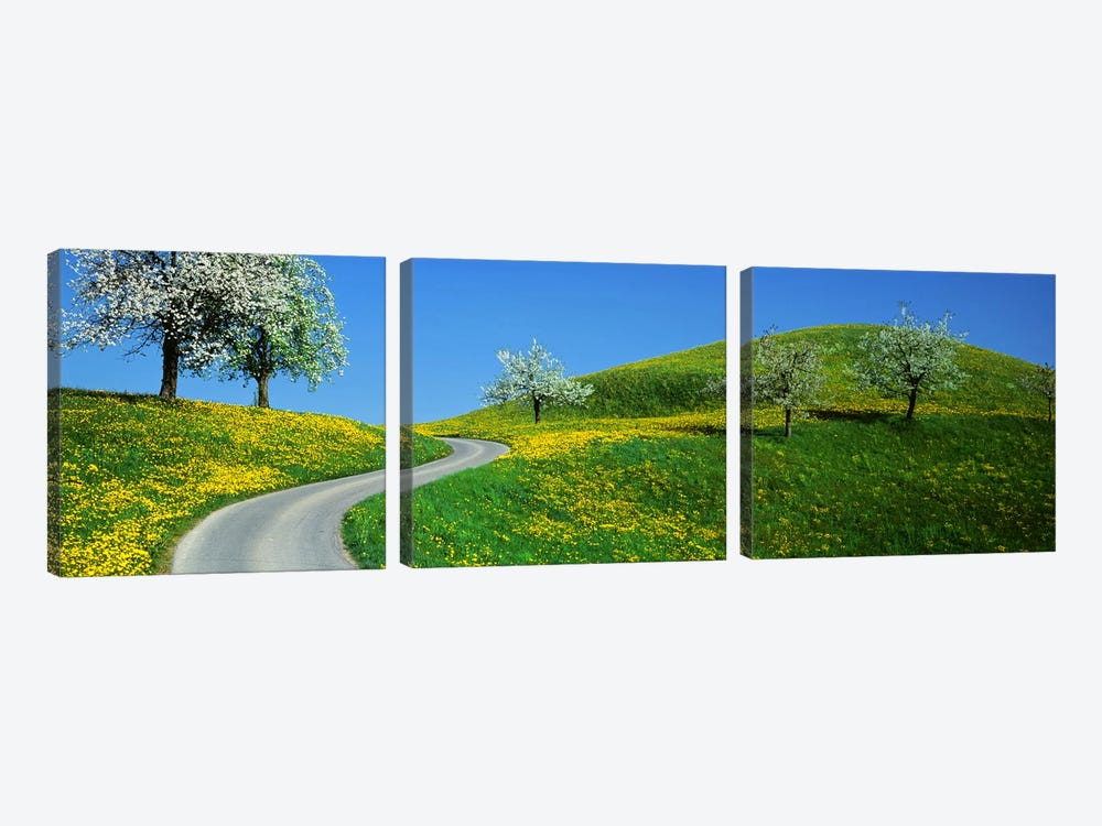 Winding Road Canton Switzerland by Panoramic Images 3-piece Canvas Wall Art