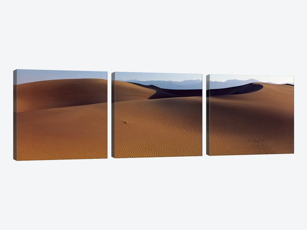 Desert Death Valley CA USA by Panoramic Images 3-piece Canvas Wall Art