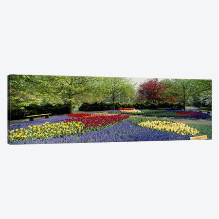 Keukenhof (Garden Of Europe), Lisse, South Holland, Netherlands Canvas Print #PIM2415} by Panoramic Images Canvas Print