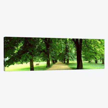 Trees Salzburg Austria 3-Piece Canvas #PIM2419} by Panoramic Images Canvas Artwork