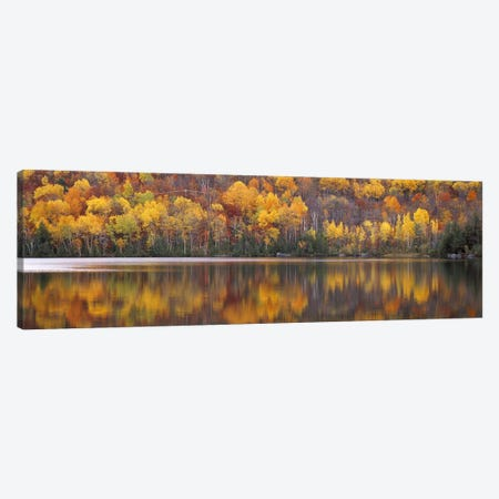 Laurentide Quebec Canada Canvas Print #PIM2429} by Panoramic Images Art Print