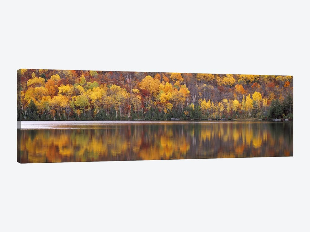 Laurentide Quebec Canada by Panoramic Images 1-piece Canvas Artwork