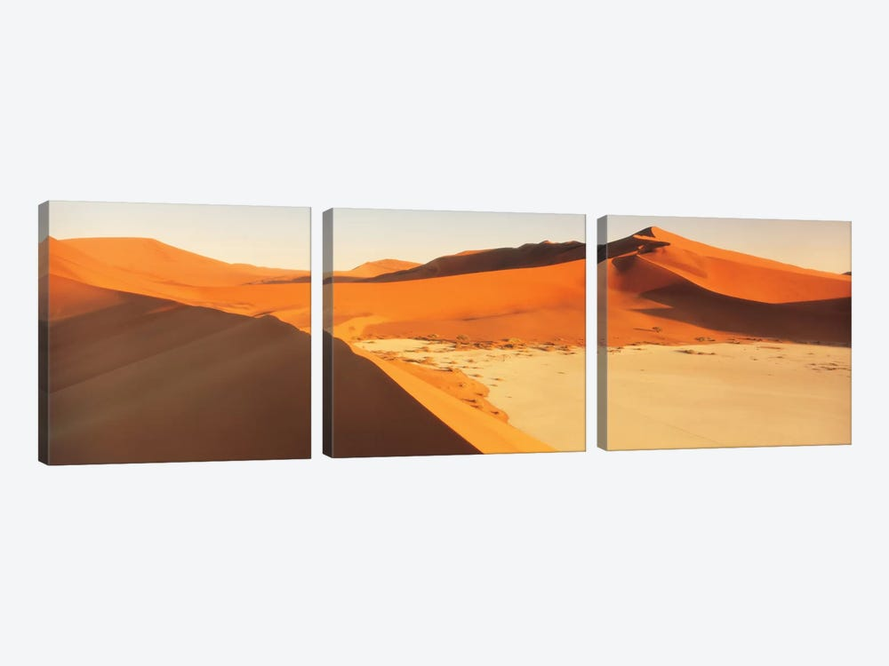 Desert Namibia by Panoramic Images 3-piece Canvas Wall Art