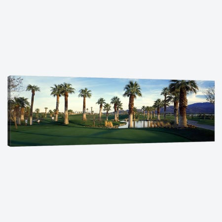 Desert Springs Golf Course, Palm Desert, Riverside County, California, USA Canvas Print #PIM24} by Panoramic Images Canvas Art Print