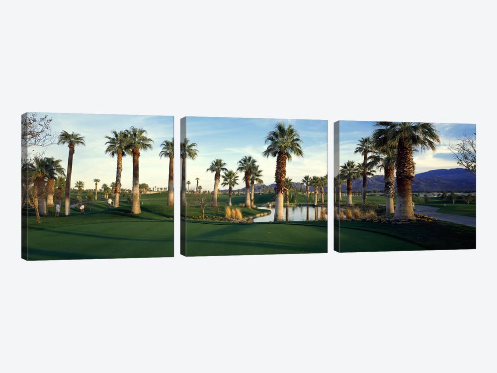 Desert Springs Golf Course, Palm Desert, Riverside County, California, USA by Panoramic Images 3-piece Canvas Wall Art
