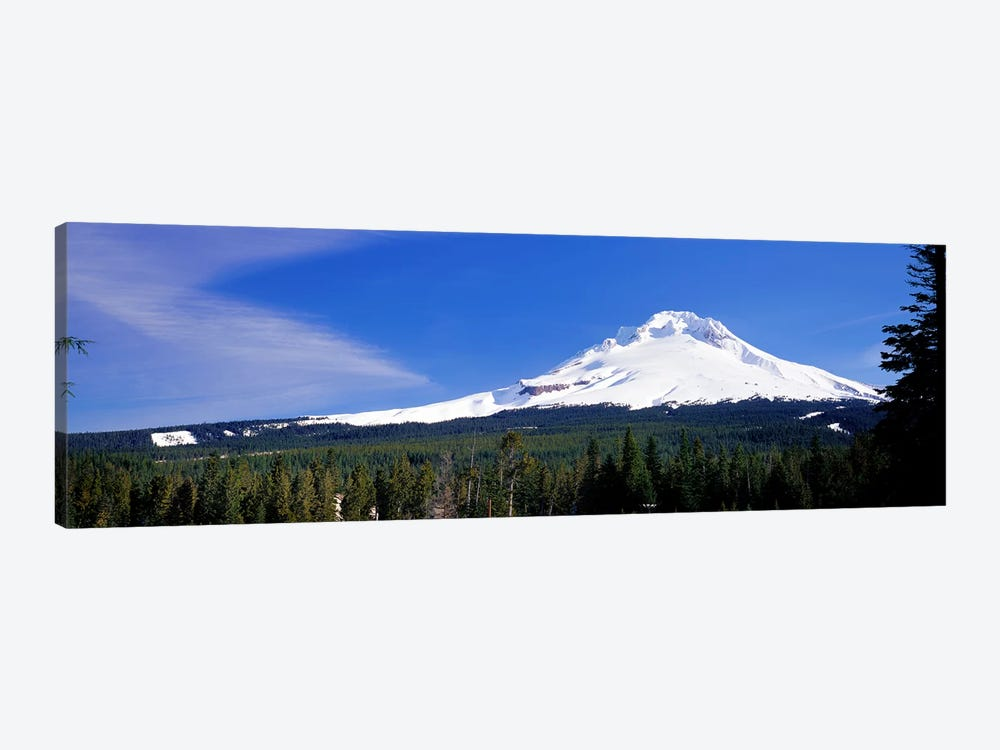 Mount Hood OR USA by Panoramic Images 1-piece Canvas Artwork