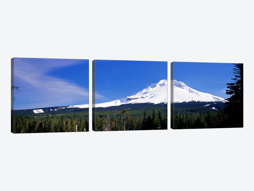Mount Hood OR USA by Panoramic Images 3-piece Canvas Art