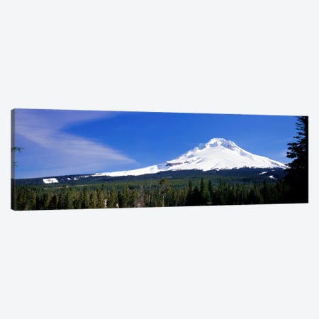 Mount Hood OR USA Canvas Print #PIM2502} by Panoramic Images Canvas Artwork