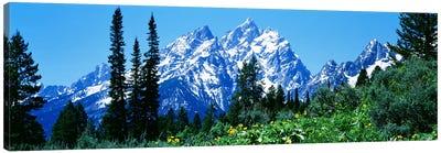 Grand Teton National Park WY USA Canvas Print #PIM2506