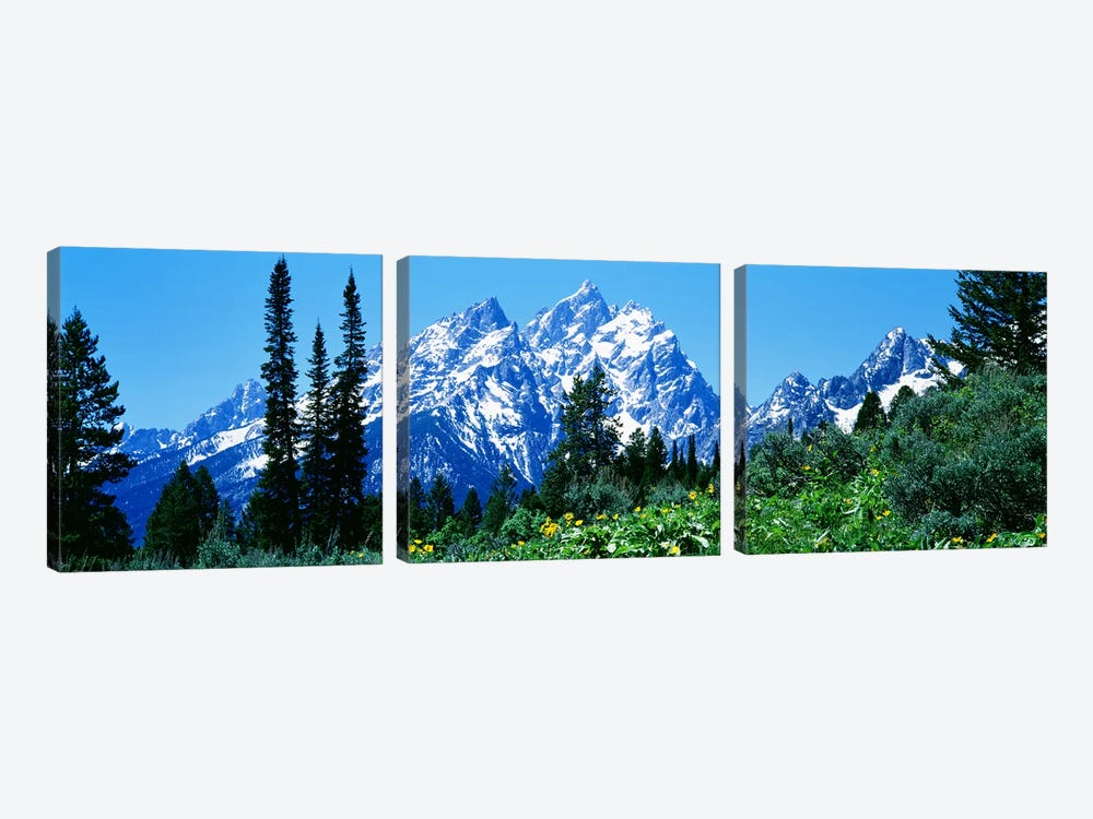 Grand Teton National Park WY USA by Panoramic Images 3-piece Canvas Artwork
