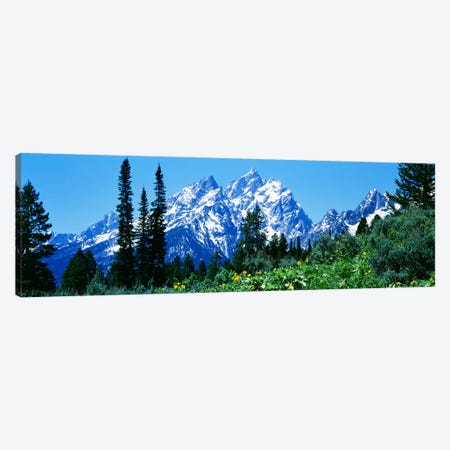 Grand Teton National Park WY USA Canvas Print #PIM2506} by Panoramic Images Art Print