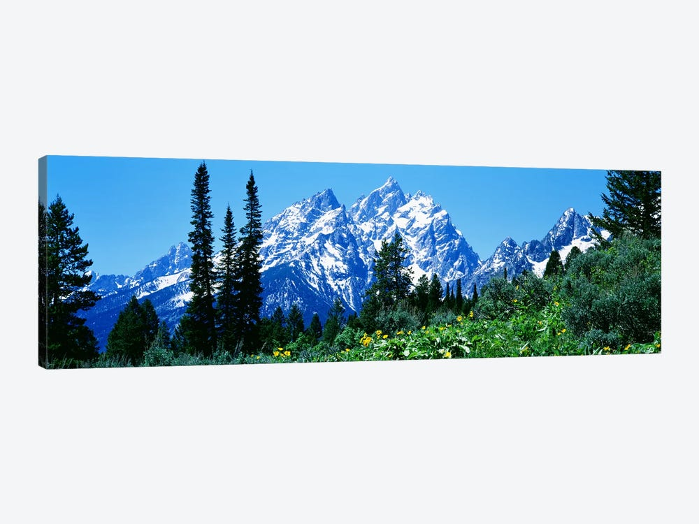 Grand Teton National Park WY USA by Panoramic Images 1-piece Canvas Artwork