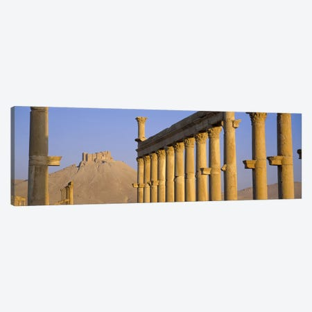 Low angle view of Great Colonnade, Palmyra, Syria Canvas Print #PIM2529} by Panoramic Images Canvas Wall Art