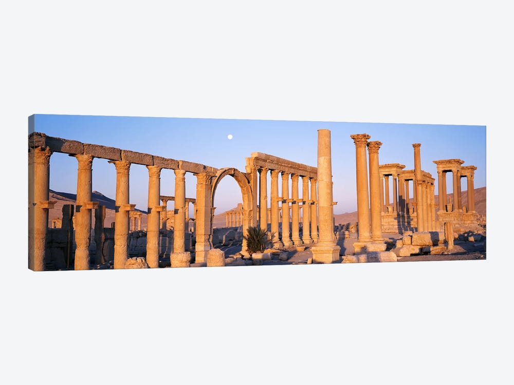 Ruins, Palmyra, Syria by Panoramic Images 1-piece Canvas Wall Art