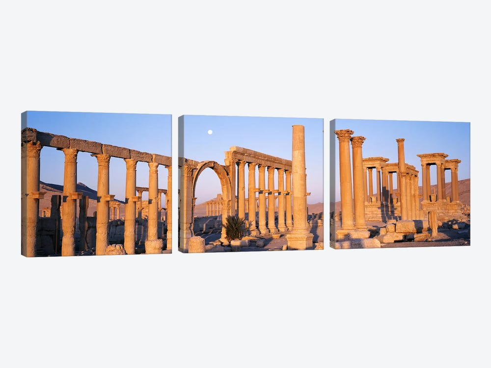 Ruins, Palmyra, Syria by Panoramic Images 3-piece Canvas Artwork