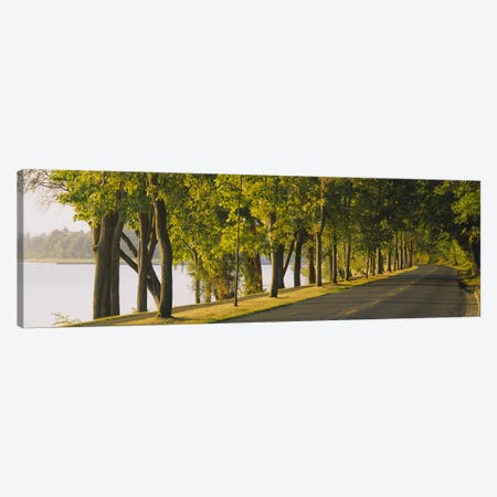 Trees along a road, Lake Washington Boulevard, Seattle, Washington State, USA Canvas Print #PIM2575} by Panoramic Images Canvas Artwork