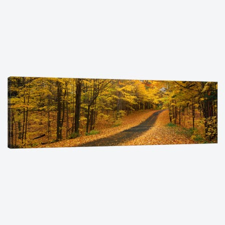 Autumn Road, Emery Park, New York State, USA Canvas Print #PIM257} by Panoramic Images Canvas Art